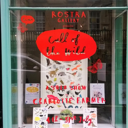 blog show window