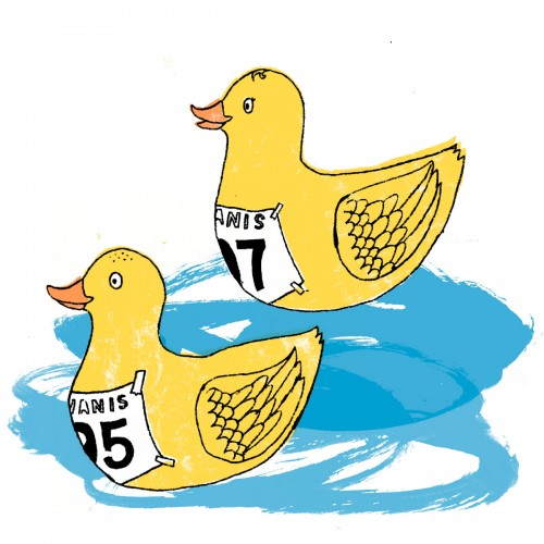 unicef duck race colour