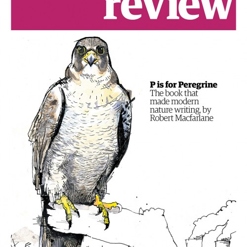 REVcover170415 PeregrineAH web